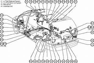 Toyota Rav4 Body Parts Diagram  U2013 Periodic  U0026 Diagrams Science