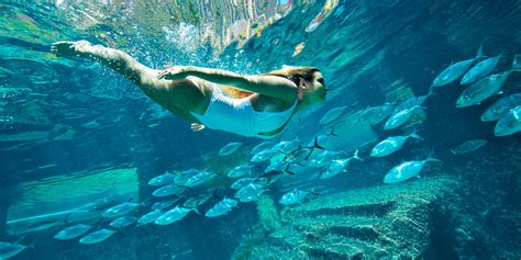 What You Need to Know Before Visiting Atlantis | Travelzoo