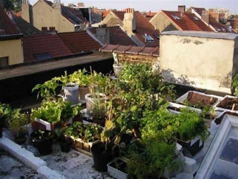 Growing Organic Community-darling Magazine