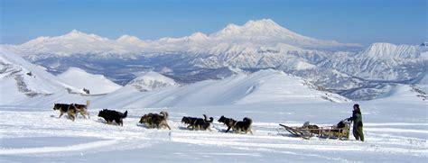 hundeschlitten bilder kamtschatka land der vulkane