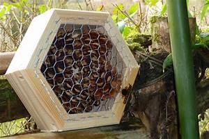 Abri à Insectes : comment accueillir les amis naturels du jardinier ~ Premium-room.com Idées de Décoration