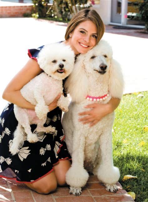 maria menounos modern dog magazine