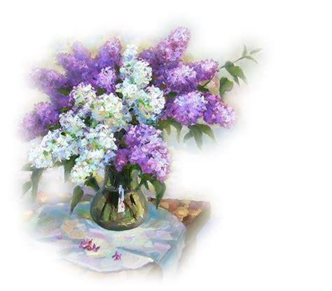 lilas en pot entretien lilas en pot