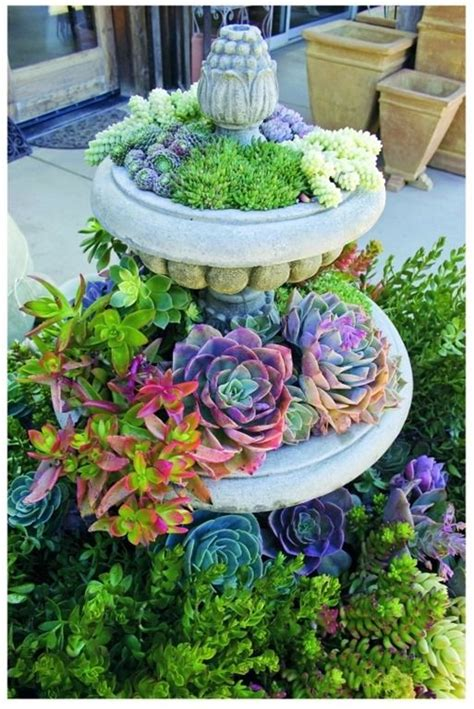 beautiful succulent gardens beautiful succulent garden pots baskets pinterest