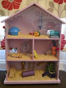 The 25+ best ideas about Hamster House on Pinterest ...