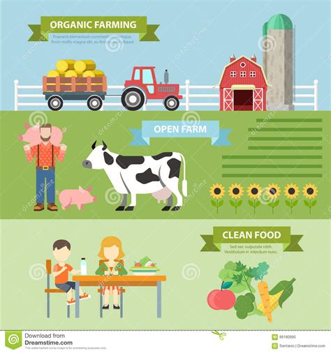 cuisine concept organic farm flat vector infographics farming eco
