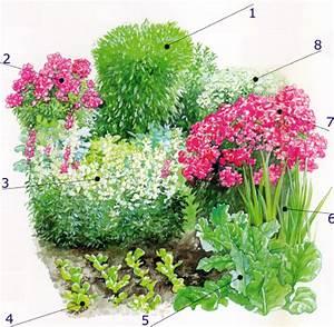 Gartengestaltung Bauerngarten Bilder : gartenschlumpf bauerngarten im nat rlichen l ndlichen stil anlegen ~ Markanthonyermac.com Haus und Dekorationen
