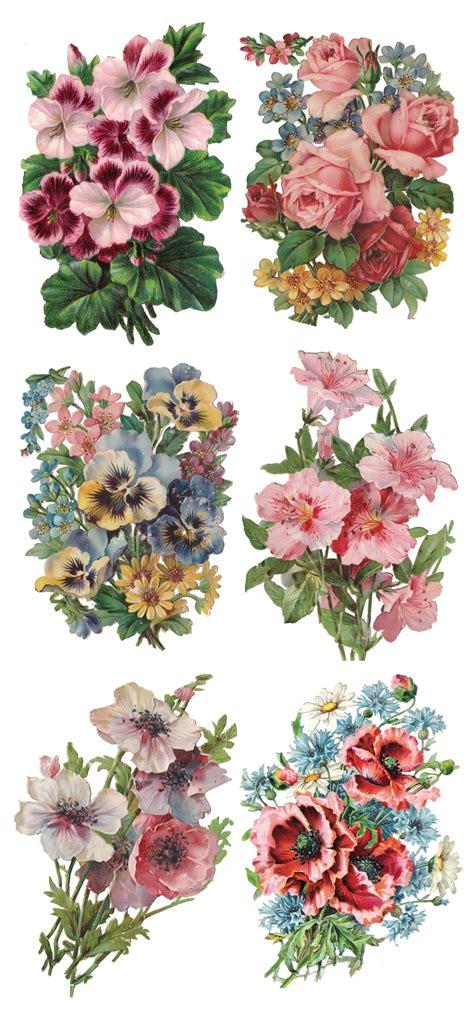 nellie flower art flower printable vintage flowers