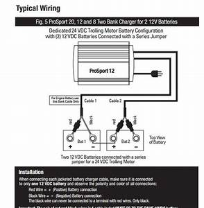 Electrical System Wiring  Components Help