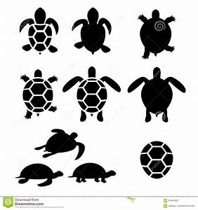 Set Of Turtle And Tortoise Silhouette Stock Vector - Image ...