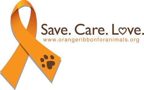 national dog fighting awareness day blog hop sand spring
