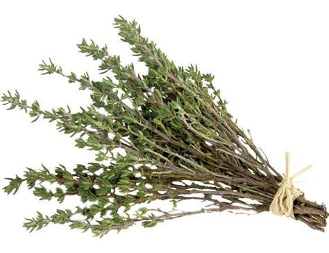 recette de cuisine viande thym sec 30 g pomona livré par toupargel fr