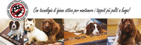 tappeti per cani tappeti per cani food mats komepetfood