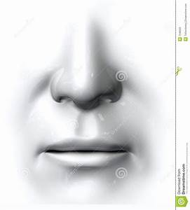 Generic Nose And Mouth Stock Illustration  Illustration Of Face