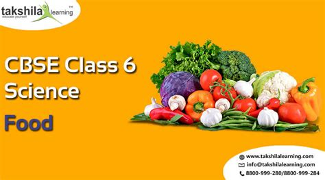 Cbse & Ncert Solutions For Class 6 Science Food  Chapter 1
