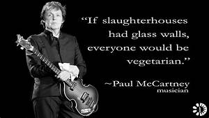 If slaughterhouses had glass walls, ever by Paul Mccartney ...