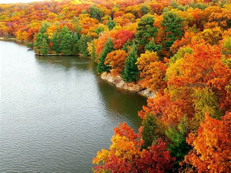 Colourful Autumn Wallpaper by Wallpapers Autumn Scenery Desktop Wallpapers