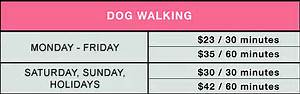 Dog walking healthy hounds doggie daycare and for Professional dog walker rates