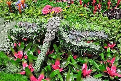 Gardens Canada Blooms Exhibits Feature Tickets