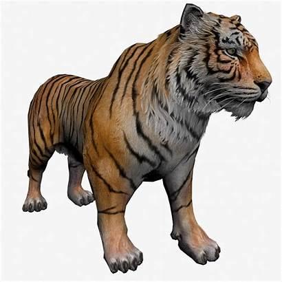 3d Tiger Animated Animal Models Turret Gun