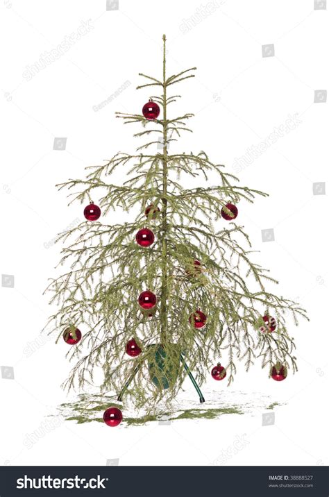 my christmas tree died half dead tree isolated on a white background stock photo 38888527