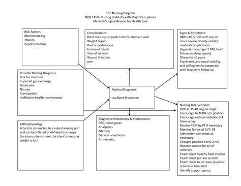 Nursing Concept Maps Templates by Nursing Diagnosis Concept Maps Scope Of Work Template
