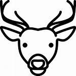Venado Cabeza Head Deer Icons Gratis Icono