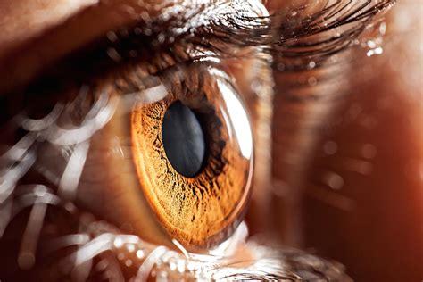 eye inside human robot surgery performs technology