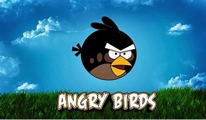 Birds Angry Lucu Laptop Keren Untuk Gambar