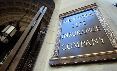 Top New York Life Insurance Providers  Madailylife. Foremost Insurance Online San Diego Cremation. Mccormack Plumbing Montclair Nj. Drug Rehab Centers In Va Dental Schools Texas. Law School In California Pro Security Cameras. Guitar Lessons Boulder Co Courses On Big Data. Doctorate In Music Education Online. Florists Melbourne Australia. Storage Facilities In Los Angeles