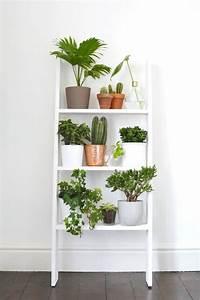 Etagere De Jardin Pour Plantes : une tag re murale pour exposer les plantes coup de ~ Teatrodelosmanantiales.com Idées de Décoration