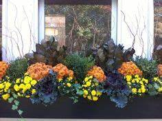 fall window box ideas on Pinterest
