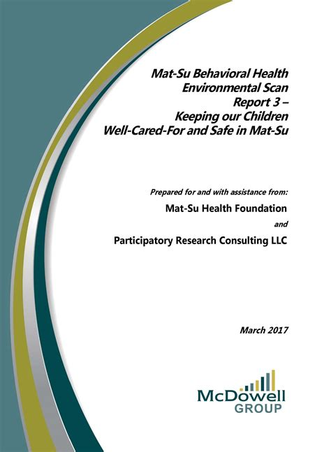Mat Su Services For Children And Adults - mat su behavioral health environmental scan report 3