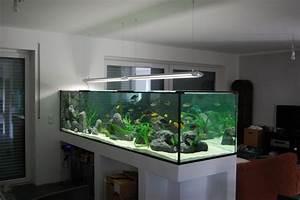 Aquarium Als Raumteiler : mein traumbecken ist fertig 3 meter malawisee aquarien ~ Michelbontemps.com Haus und Dekorationen