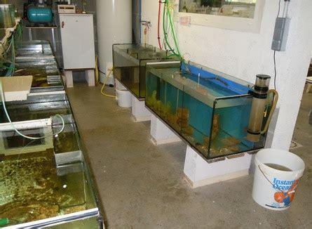 ecurie marine sous sol elevage de la nourriture vivante