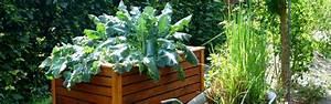Große Pflanzkübel Richtig Befüllen : hochbeete richtig bef llen und bepflanzen ~ Buech-reservation.com Haus und Dekorationen