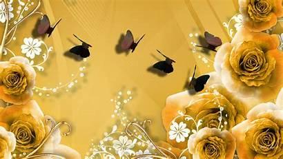 Rose Gold Golden Wallpapers Roses Desktop Iphone