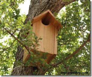 owl house plans  bird house plans