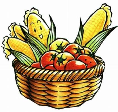 Clipart Crops Harvest Clip Indian Farmer Vegetables