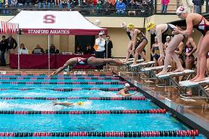 stanford 39 s swimming and diving tracy