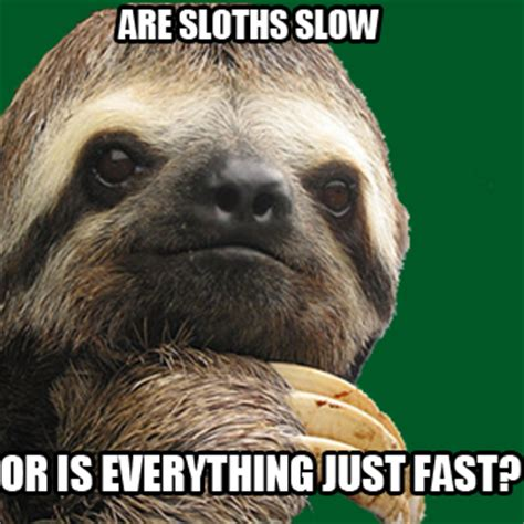 Fitness Sloth Meme - excuse busters