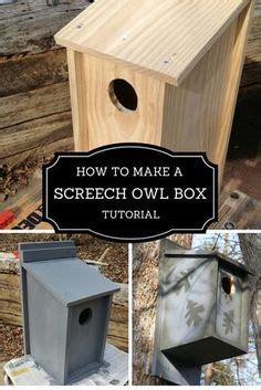 audubon birdhouse plans plans  build owl houses floor plans owl house owl nest box