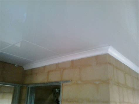 Ceiling Board by Pvc Ceilings Pelican Systems
