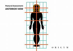 Postural Assessment  Guide For Fitness Professionals  2020