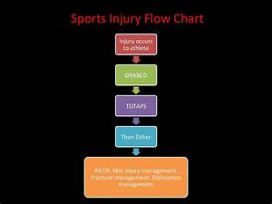 Hsc Pdhpe Option 3  U2013 Sports Medicine
