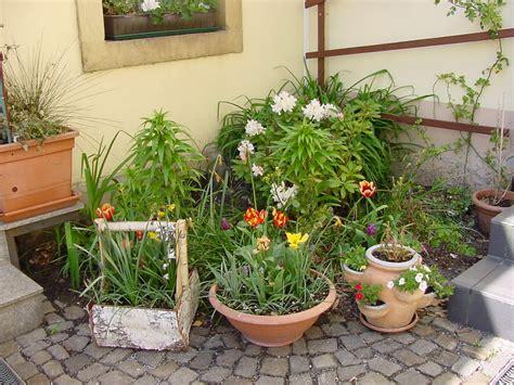 Garten Kaufen Dresden Pieschen by Pfingst Impressionen Aus Dresden Pension Pieschen Dresden
