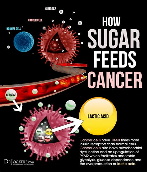 sugar feeds cancer growth drjockerscom