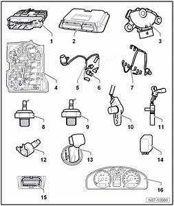 Volkswagen Workshop Manuals  U0026gt  Golf Mk5  U0026gt  Power Transmission  U0026gt  6