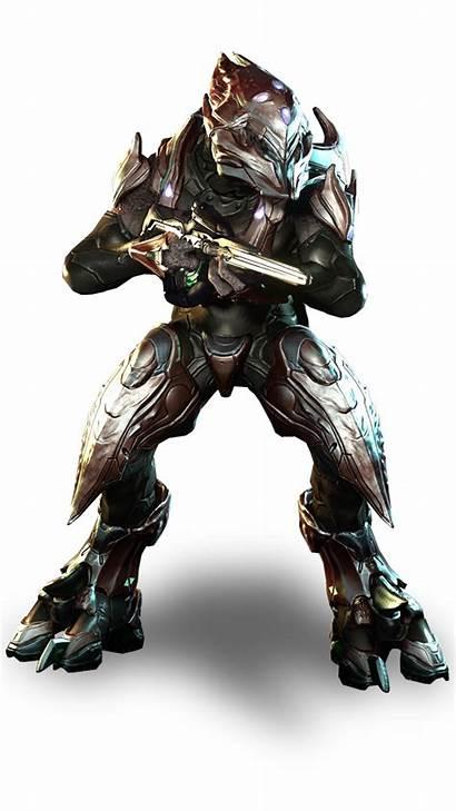Zealot Halo Elite Sangheili Vs Storm Elites