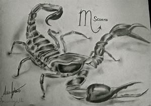 Scorpion Tattoo Design by titaniumsnowtiger on DeviantArt
